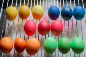 Gekochte und gefärbte Eier trocknen