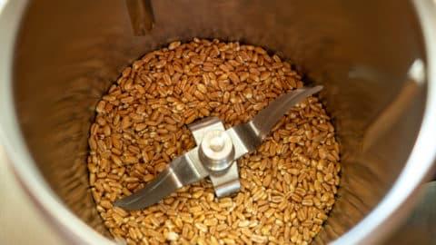 Weizenkörner im Mixtopf des Thermomix