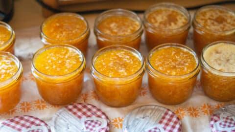 Aprikosenmarmelade in Einmachgläser füllen