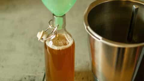 Honiglikör aus dem Thermomix® abfüllen