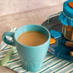 Cappuccino Pulver aus dem Thermomix®